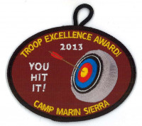 X149720C TROOP EXCELLENCE AWARD 2013  Marin Council #35
