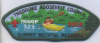 353304 TROOP 323 Theodore Roosevelt Council #386