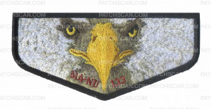 Patch Scan of Ma-Nu 133 Eagle face flap