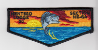 Nentego Lodge 20 Section NE-6A National Capital Area Council #82