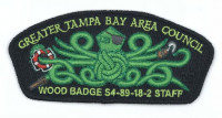 Greater Tampa Bay Area Council Wood Badge S4-89-18-2 STAFF Billy McCracken