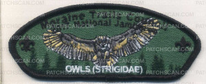 Patch Scan of 336318 A OWLS