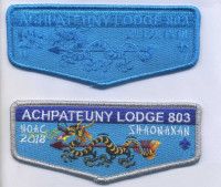 356877 ACHPATEUNY Far East Council #803