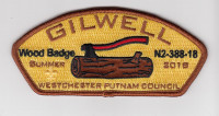 Gilwell Wood Badge N2-388-18 CSP Westchester-Putnam Council #388