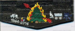 Patch Scan of Siwinis Lodge LAAC Pocket Flap
