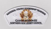 NNJC NYLT Staff CSP 2019 Northern New Jersey Council #333