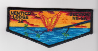 Nentico Lodge 12 Section NE-6A National Capital Area Council #82