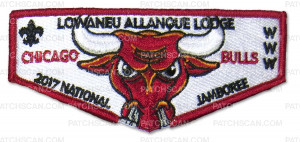 Patch Scan of 24194 2017 OA Jamboree Bull's Set