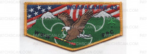 Patch Scan of Lodge flap (PO 83561r2)