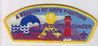 A Beacon of Hope Fighting Pediatric Cancer JSC CSP Jersey Shore Council #341