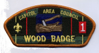 Wood Badge CAC 2014 Capitol Area Council #564