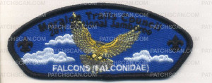 Patch Scan of 336319 A FALCONS