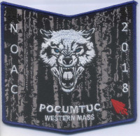 353688 POCUMTUC Western Massachusetts Council #234