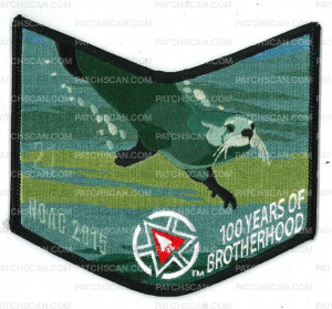 Patch Scan of BSA COA Jaccos NOAC 2015