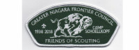 2018 Friends of Scouting CSP (PO 87527) Greater Niagara Frontier Council #380