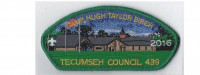 Camp Birch CSP 2016 (green) Tecumseh Council #439